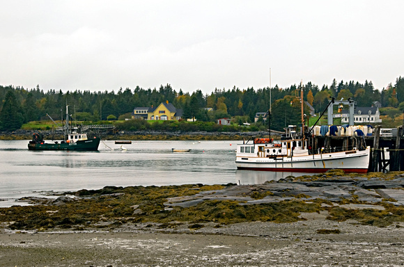 Port Clyde Harbor